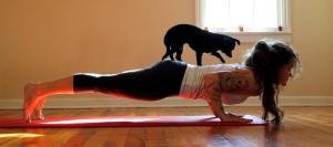 Little man assisting Jo during chaturanga